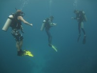 Floating Divers